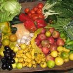 2009-06-unser-einkauf